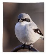 Loggerhead Shrike - Smokey Fleece Blanket