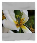 London White Tulip Fleece Blanket