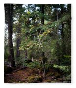 Lone Dogwood Fleece Blanket