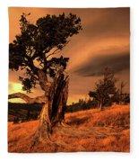 Lone Pine Whaleback Ridge Fleece Blanket