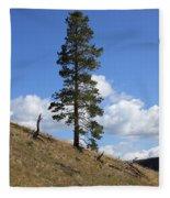 Lone Pine, Yellowstone Fleece Blanket