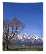 Lone Tree At Tetons Fleece Blanket