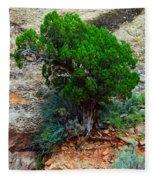 Lone Tree On A Cliff Fleece Blanket