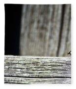 Lonely Ladybug Fleece Blanket
