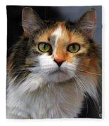Long Haired Calico Cat Fleece Blanket