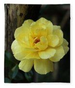 Single Yellow Rose  Fleece Blanket