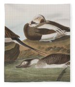 Long Tailed Duck Fleece Blanket