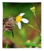 Long-tailed Skipper Butterfly Fleece Blanket