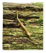 Longtailed Salamander Fleece Blanket