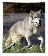 Lonly Wolf Fleece Blanket