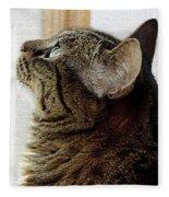 Look Out Window Tabby Cat Fleece Blanket