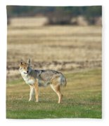 Looking Back Fleece Blanket
