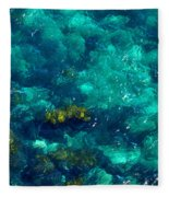 Looking Down At Shellow Water Fleece Blanket