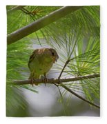 Looking Down - Common Sparrow - Passer Domesticus Fleece Blanket