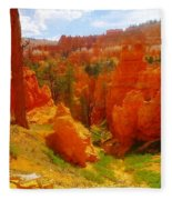 Looking Down In Bryce Fleece Blanket
