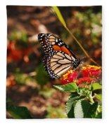 Looking For Nectar Fleece Blanket