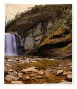 Looking Glass Falls Pisgah National Forest 2 Fleece Blanket