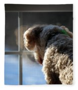 Looking Outside Fleece Blanket