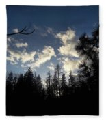Looking To The Sky Fleece Blanket