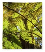 Looking Up To A Beautiful Sunglowing Fern In A Tropical Forest Fleece Blanket