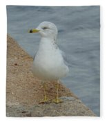 Lost Seagull Fleece Blanket