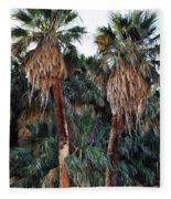 Thousand Palms Oasis  Fleece Blanket
