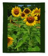 Louisa, Va. Sunflowers 3 Fleece Blanket