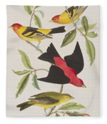 Louisiana Tanager Or Scarlet Tanager  Fleece Blanket