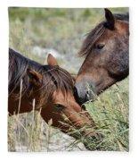 Love And Friendship Fleece Blanket