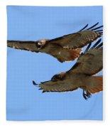 Courtship Love Is In The Air Fleece Blanket