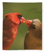 Love Is In The Air Cardinals Square Fleece Blanket