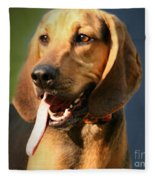 Loveable Hound Fleece Blanket