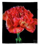 Lovely Carnation 12718-1 Fleece Blanket