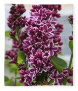 Lovely Lilacs Fleece Blanket