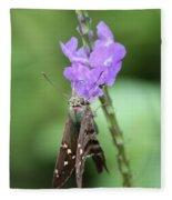 Lovely Moth On Dainty Flower Fleece Blanket