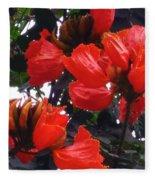 African Tulips Fleece Blanket