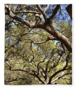 Low Angle View Of Trees In A Park Fleece Blanket