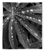 Lupin Leaves With Rain Drops  Fleece Blanket
