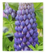 Lupin Persian Slipper Flower Fleece Blanket