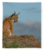 Lynx In Profile On Rock Looking Down Fleece Blanket