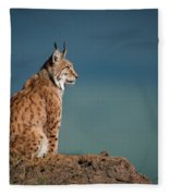 Lynx In Profile On Rock Looking Up Fleece Blanket