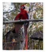 Macaw Guatemala Fleece Blanket