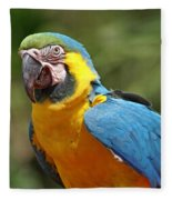 Macaw Fleece Blanket
