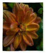 Macro Of Dahlia Flower Fleece Blanket