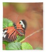 Madiera Butterflies Fleece Blanket