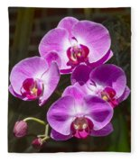 Magenta Orchids Fleece Blanket