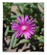 Magenta Purple Desert Moss Rose Fleece Blanket