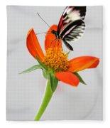 Magical Butterfly Fleece Blanket