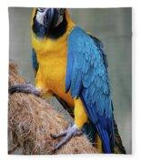 Magnificent Macaw Fleece Blanket