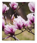 Magnolia Blooming In An Early Spring Fleece Blanket
